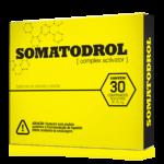 somatodrol logo